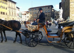 Terror e carrozza marrone
